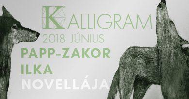 Kalligram 2018/6