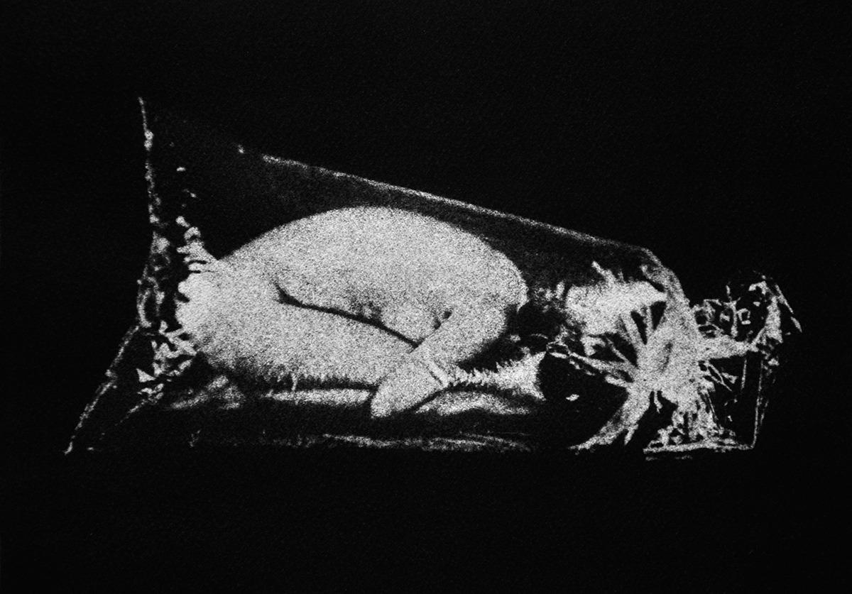 Embrió – A feltárás című sorozatból, gumi-olaj nyomat, 2017