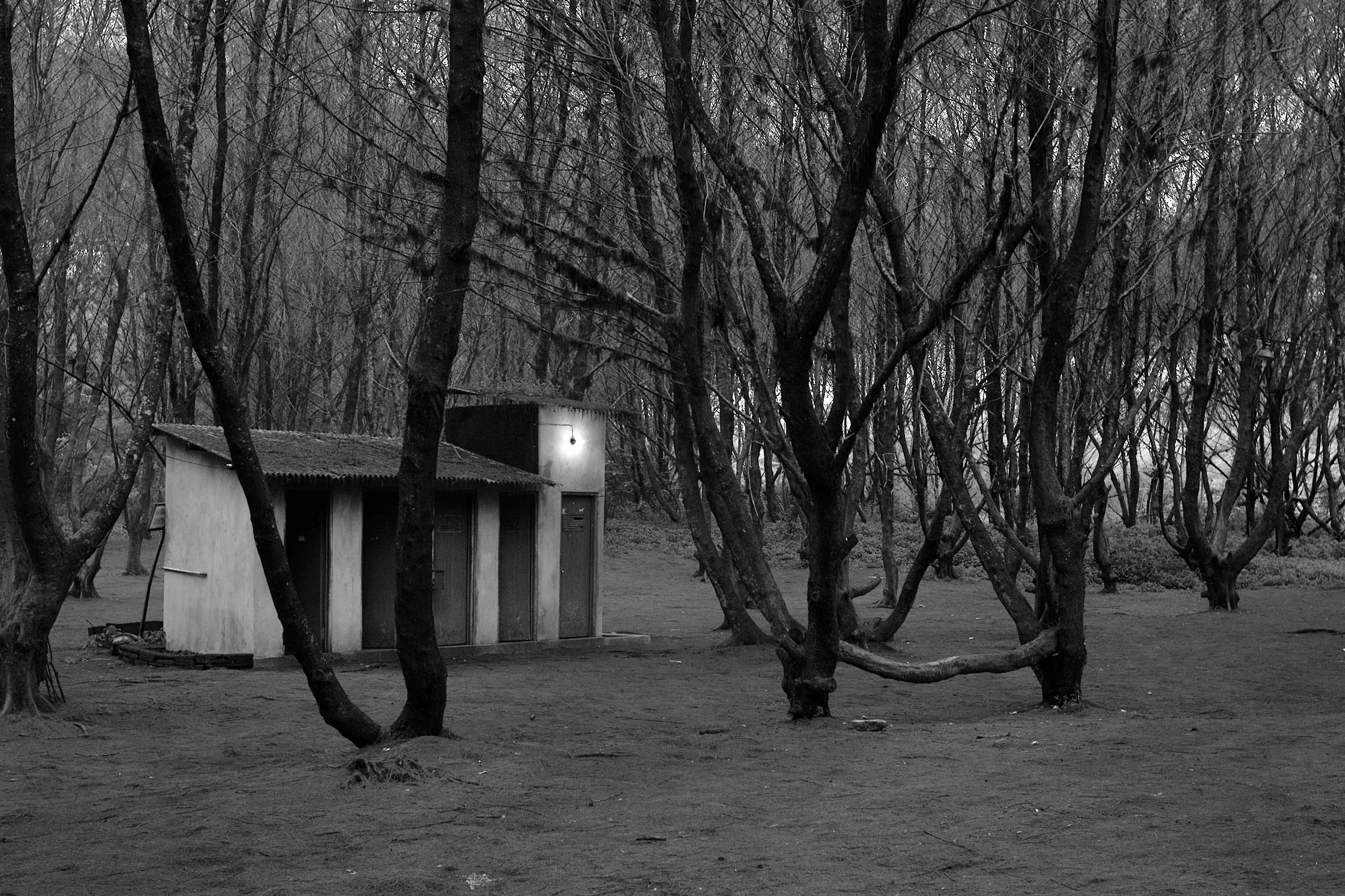 Fotó: Bartis Attila